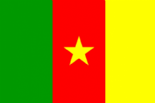 CAMEROON - HAND WAVING FLAG (MEDIUM)